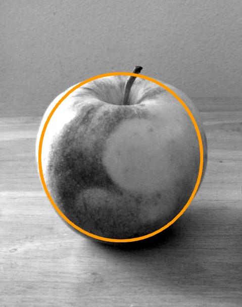 Free forum : I draw - Portal Appleshape